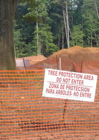 Tree Protection Zone