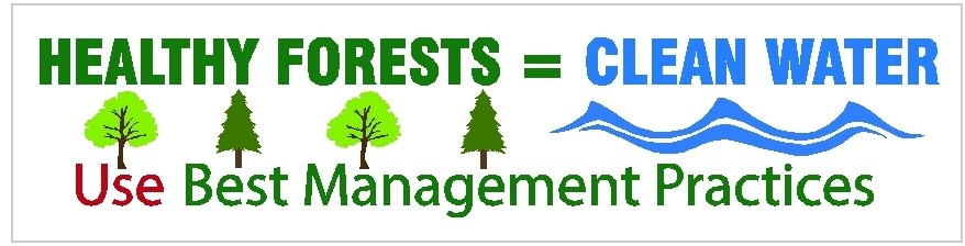 BMP Bumper Sticker: Healthy Forests equal Clean Water